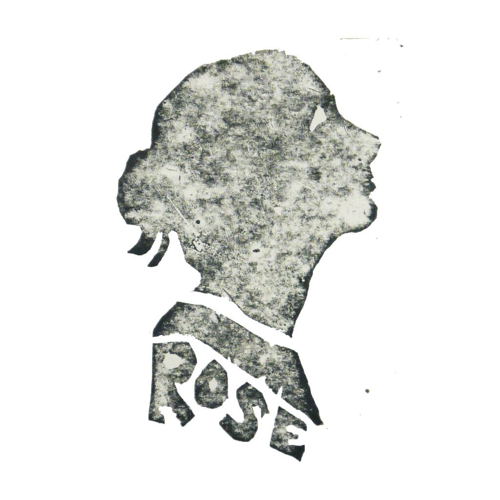 Rose Wilkinson Illustrated fabric